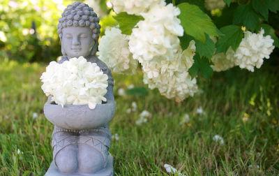buddha naturopathie reflexologie